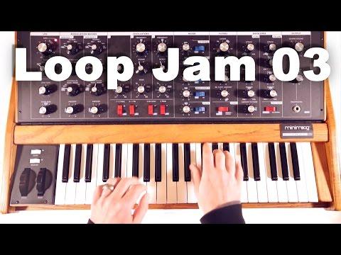 Minimoog Voyager Old School /// Loop Jam 03