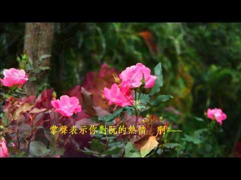音樂磁場-藝界人生 , 玫瑰B