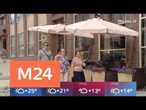 Владельцев ресторанов попросили приостановить работу летних кафе из-за ветра - Москва 24