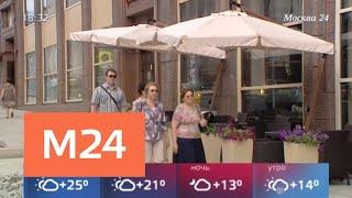 Смотреть видео Владельцев ресторанов попросили приостановить работу летних кафе из-за ветра - Москва 24 онлайн