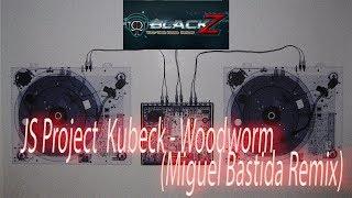 JS Project Kubeck Woodworm Miguel Bastida Remix