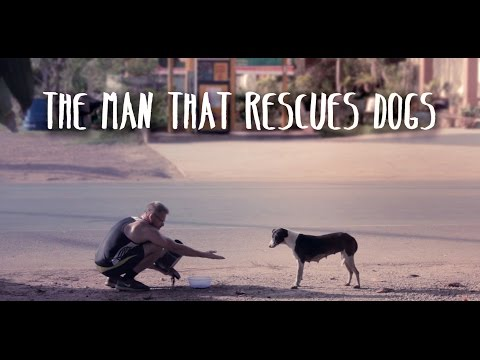 The Man that Rescues Dogs - Official Documentary