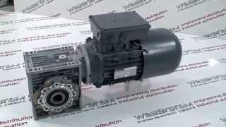 Silnik Lenze z hamulcem(, 2015-04-18T09:59:34.000Z)