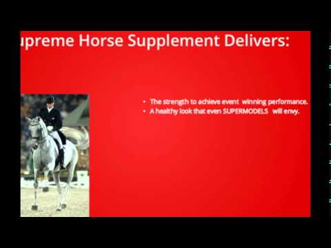 Supreme Horse vitamin and mineral supplement -  Does it work?
