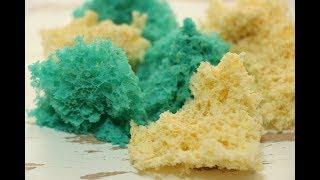 Бисквитный Мох ✧ Молекулярный Бисквит