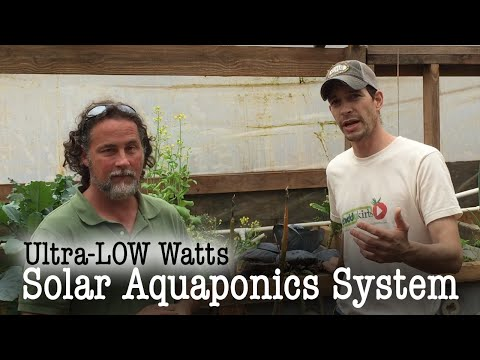 Off-Grid Solar Aquaponic System