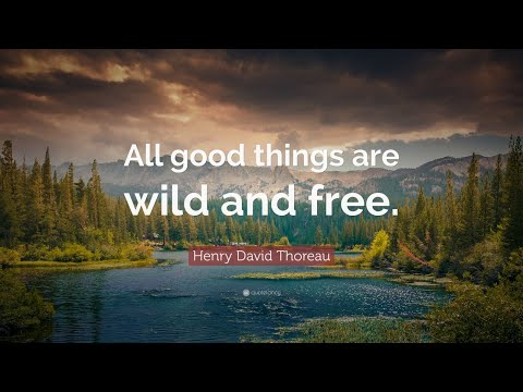TOP 20 Henry David Thoreau Quotes