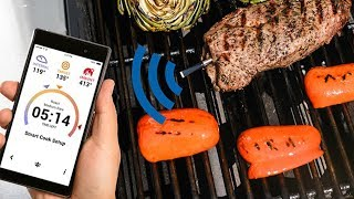 MEATER Truly Wireless Meat Probe Review