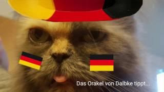 Das Orakel von Dalbke tippt : Spanien gegen Tschechien EM 2016 13.06.2016