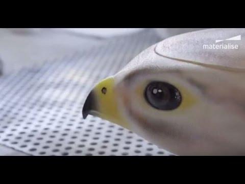 10 невероятных и полезных роботов-животных