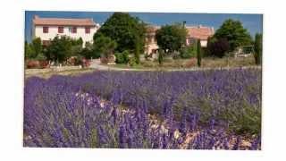 Vente propriété de prestige/gîtes Haute Provence Lavandes. Annonces immobilières
