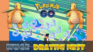 Huge DRATINI NEST and EASY FAST Dragonite and Gyarados