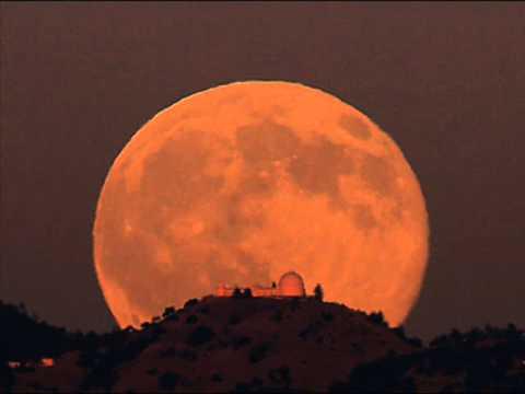 Cheb mami feat nina rocha - moonrise الشاب مامي