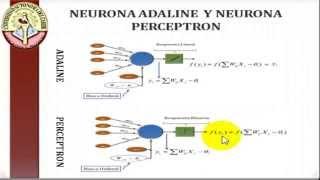Neurona ADALINE y Red Neuronal BACKPROPAGATION