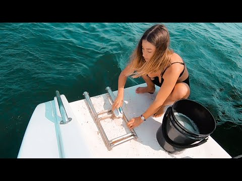 BOAT LIFE: Annoying, GROSS Jobs On Anchor. Ep. 231