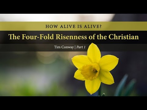 How Alive is Alive? The Four-Fold Risenness of the Christian (Part 1) - Tim Conway
