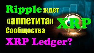 ВНИМАНИЕ: Почему Ripple ждет «аппетита» сообщества XRP Ledger?