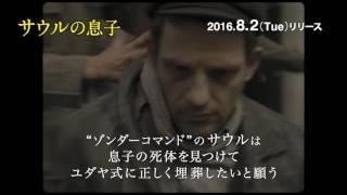 第88回アカデミー賞 外国語映画賞受賞/第68回カンヌ国際映画祭 グランプ...