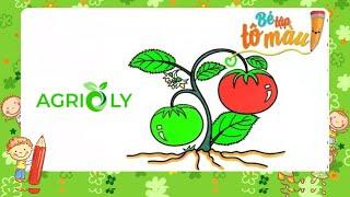 Agrioly | Bé Tập Vẽ Và Tô Màu Trái Cà Chua