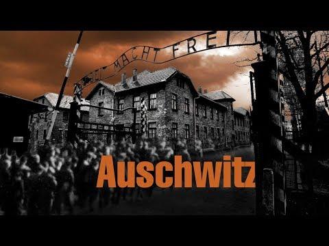 ОСВЕНЦИМ. Концентрационный лагерь Аушвиц. Страшное начало