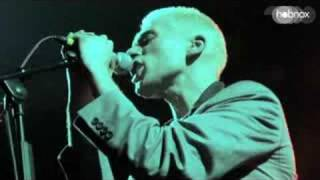 Zoot Woman - 'Information First' Live in Berlin