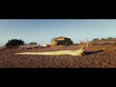 RISERVA SENTINA - Video istituzionale  HD