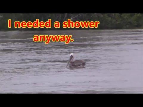 Galveston County,Tx=Hurricane Harvey Next Day-Raw Footage