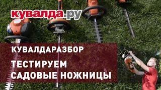 видео Садовые ножницы для стрижки кустов: аккумуляторные, электрические
