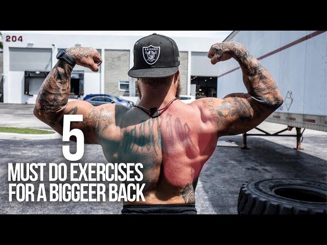 5 Must Do Back Exercises for a Bigger | Stronger Back | Phil Daru