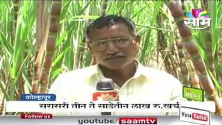 Sarjerao Patil's sugarcane farming success story