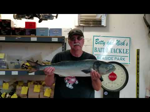 5 21 18 George 14 Pound Bluefish