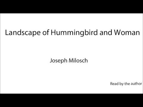 Landscape of Hummingbird and Woman -- Joe Milosch