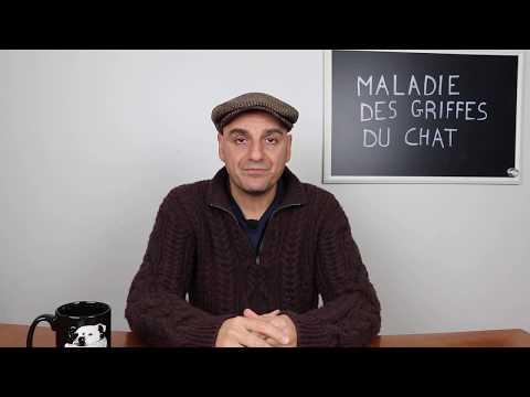 Dr. Madani: Maladie Des Griffes Du Chat