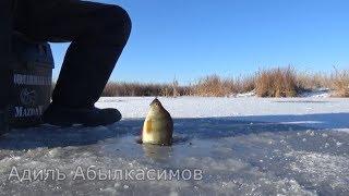 ☝▶ Первый лёд 2018. Зимняя рыбалка в новом сезоне