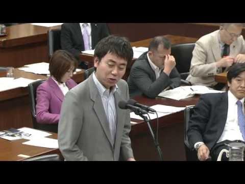 2013/05/17 衆議院 外務委員会 日本維新の会 村上政俊の質疑