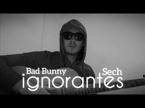 Ignorantes – Bad Bunny x Sech (Cover Version Acustica)