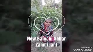 Download lagu New Balochi Sehra- by Javed Jakhrani songs 2 Zamur Jani