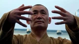 Занятия Мастера Ши Янбина по тайцзи и цигун апрель 2016