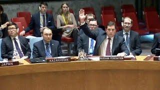 Россия и Китай заблокировали резолюцию по Сирии
