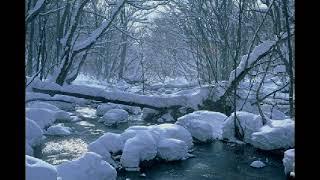 数年前、奥入瀬渓谷~十和田湖を訪ねたことがありました。 水の清らかさ...