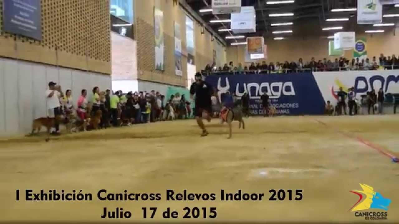 canicross 2015 bogota