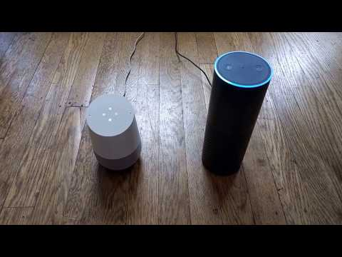 Google And Alexa Chatting With Each Other #SeeBotsChat