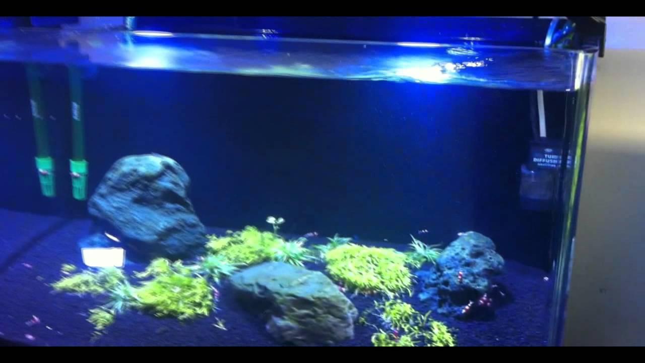 finer 18 24 30 36 48 osram led aquarium light freshwater from youtube. Black Bedroom Furniture Sets. Home Design Ideas