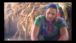 Turmeric Seed Treatment & Sowing