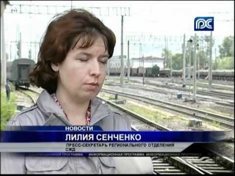 Упавшие деревья привели к задержке поездов в Вологодской области