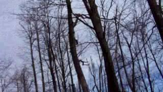 "Appalachian State University Wind Turbine named ""The Screaming Weasel"""