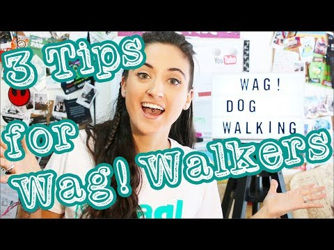 3 Tips for Wag! Dog Walkers | Wag Review Update | AFTH - YouTube