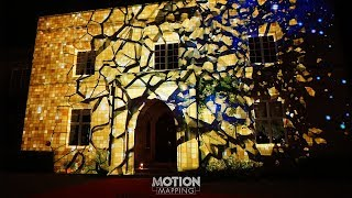 Wedding & Event Projection Mapping with Fireworks