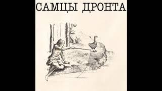 Самцы Дронта - Cassandra (Lost early 90s russian shoegaze / experimental / dream pop band)