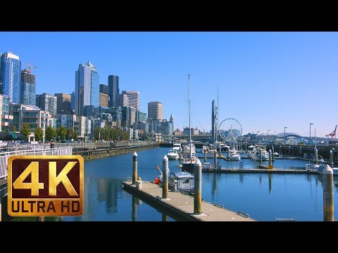 5 Hours - City Relaxation 4K Video | Downtown of Seattle  - Waterfront Park